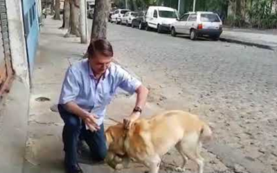 Bolsonaro anuncia criação da Secretaria dos Animais