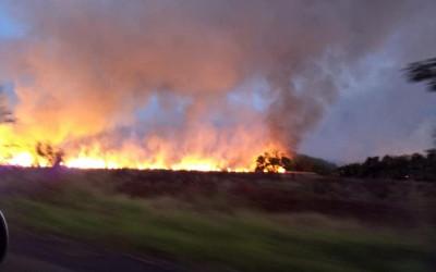 Brasilândia:Incêndio na RPPN Cisalpina, da Cesp, queimou a equivalente 2,2 mil campos de futebol
