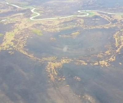 Após 23 dias de combate, incêndio é controlado e equipes são desmobilizadas no Pantanal