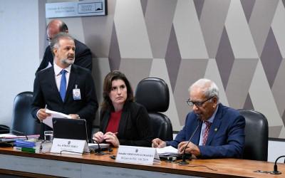 Temas de interesse social, econômico e jurídico dominaram a pauta da CCJ do Senado em 2019
