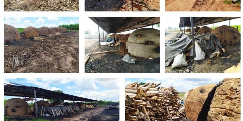Duas carvoarias clandestinas são fechadas em Ribas do Rio Pardo