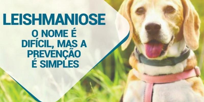 Saúde de Brasilândia realiza ações de combate à Leishmaniose