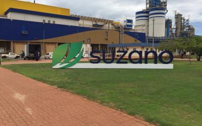 Suzano contrata coordenador(a) de logística de celulose em Três Lagoas (MS)