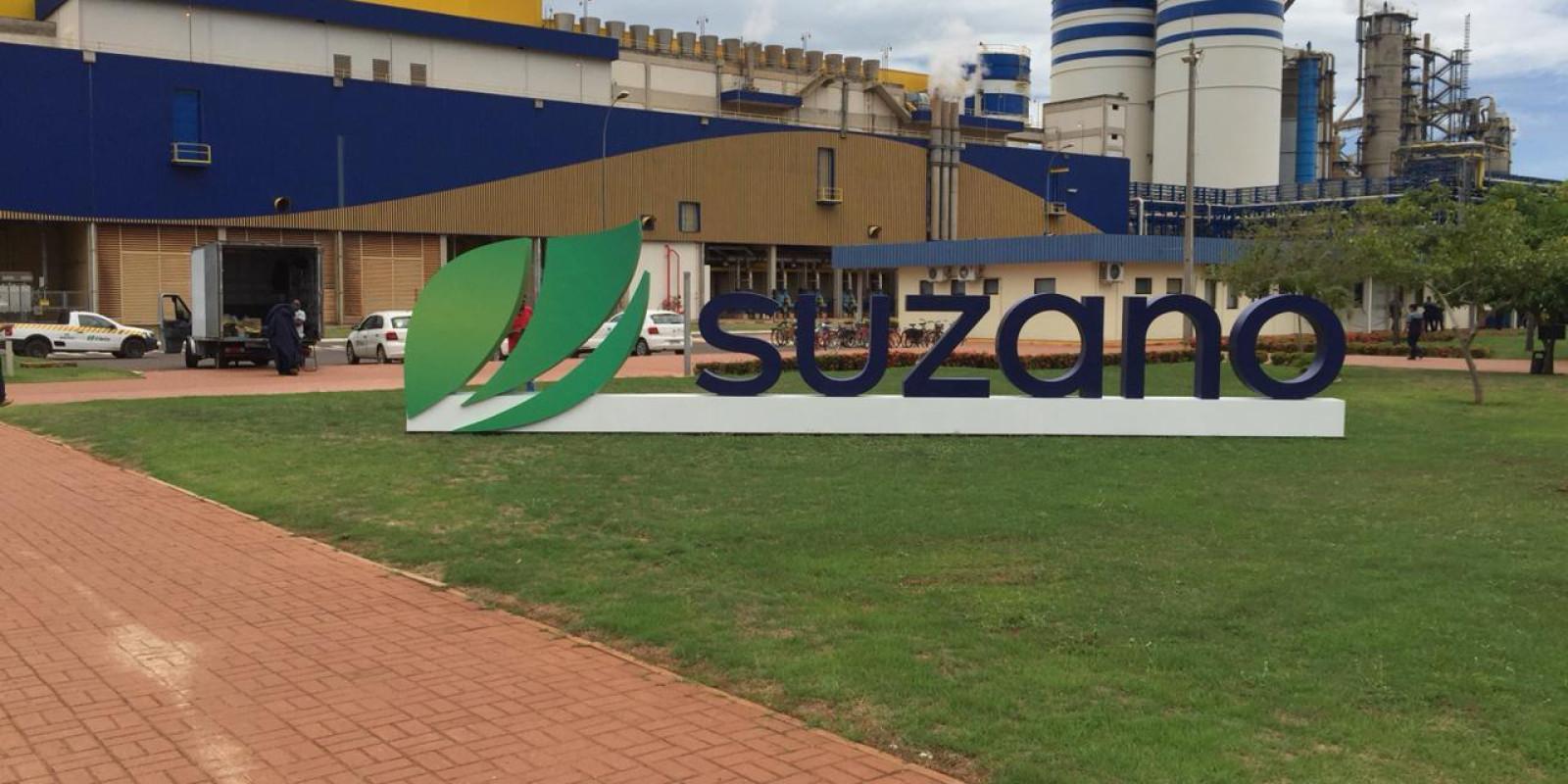 Suzano abre inscrições para o Programa Trainee 2021