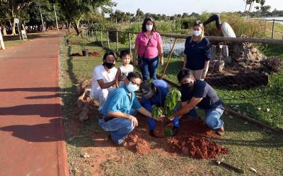 Meio Ambiente realiza plantio de cerejeiras na Lagoa Maior em homenagem ao Dia da Imigração Japonesa