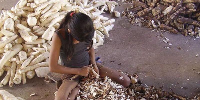 MPT e parceiros intensificam esforços pela eliminação do Trabalho Infantil